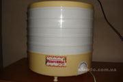Сушилка электрическая для пищевых продуктов,  электросушилка